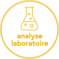 Analyses laboratoire
