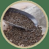 Consulter les farines blé noir
